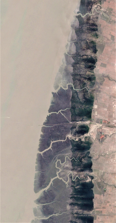 East coast of Sandwip island. Image width: 3.5 kilometer