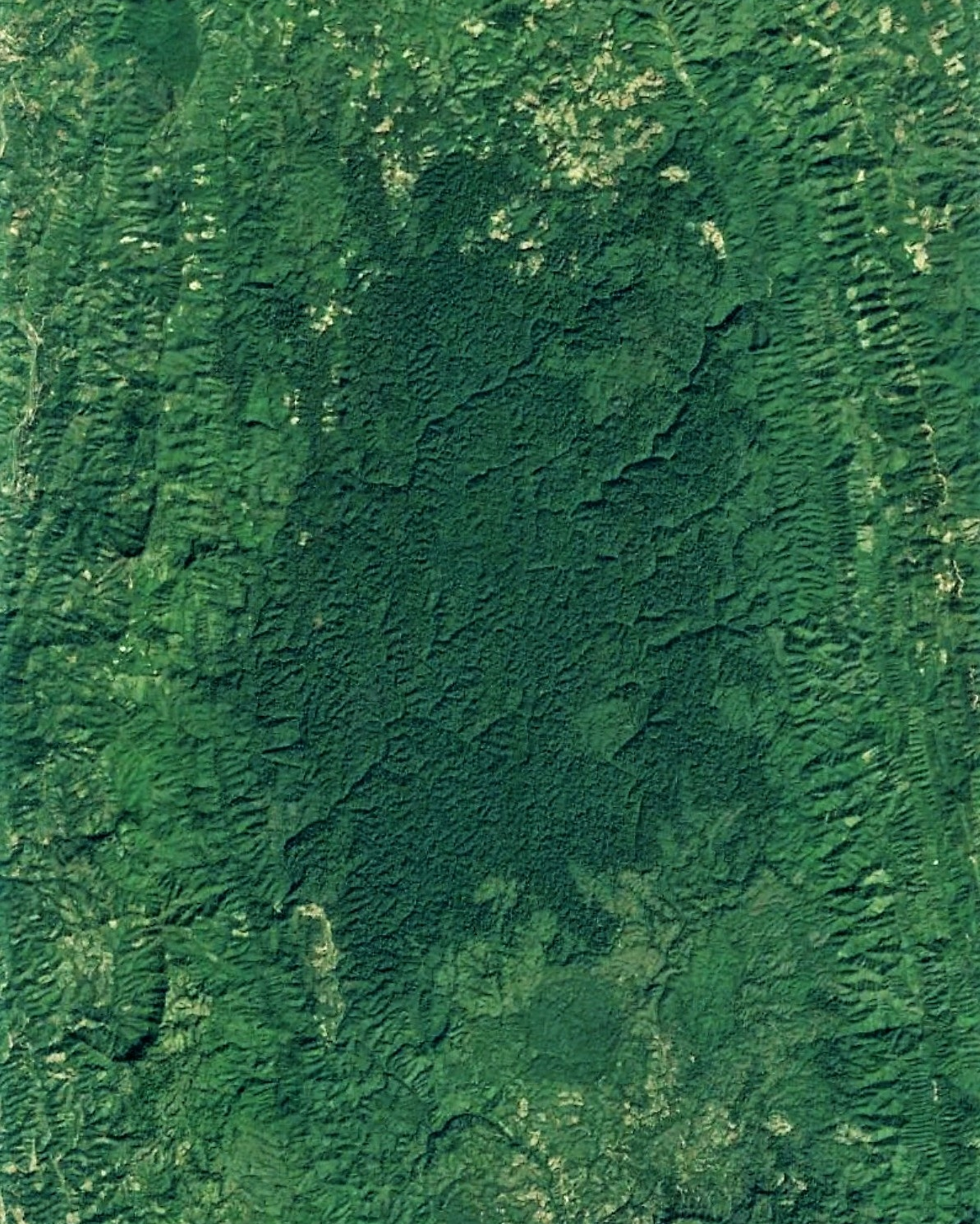 Part of Pablakhali reserved forest (zoomed out). Image width: 12 kilometer