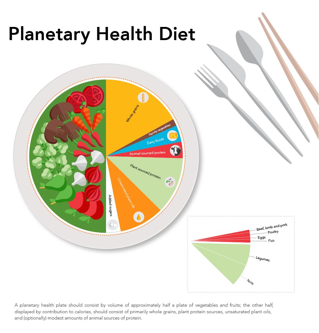 Planetary Health Diet.jpg