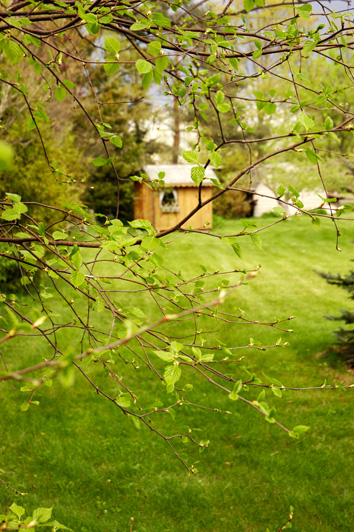 Summer May 07.jpg