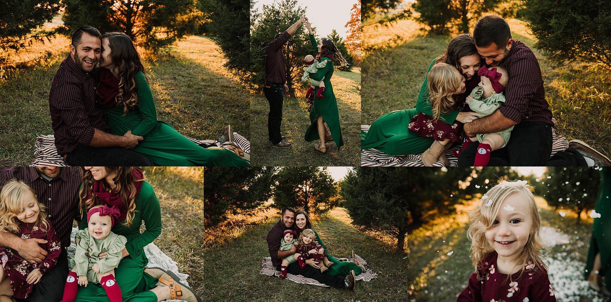 tree farm family minis -