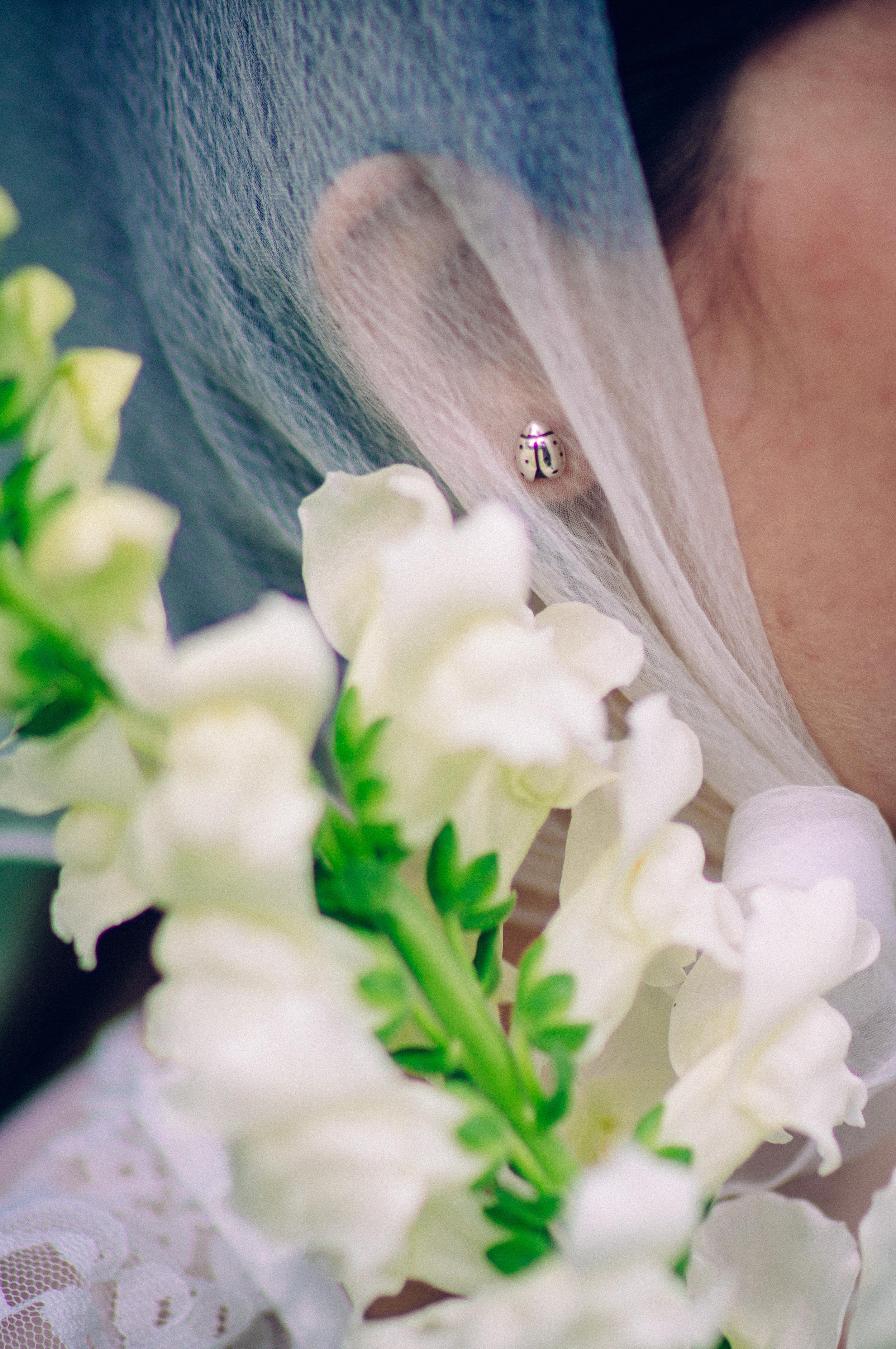 mw-ladybugEarring-silver-lookbook-2.jpg