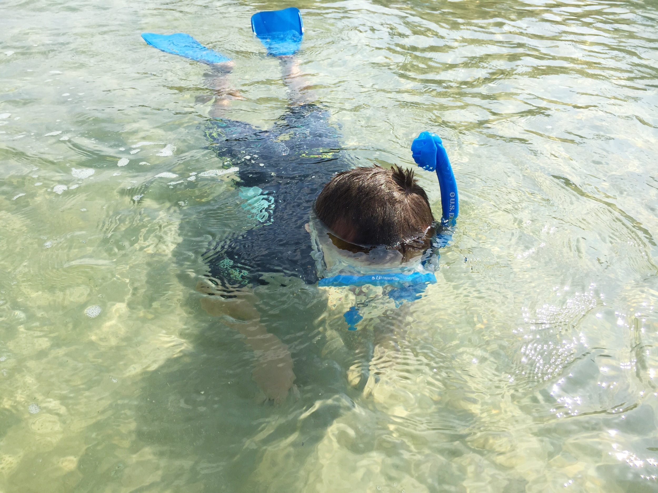 Snorkeling at Nelson Bay beach