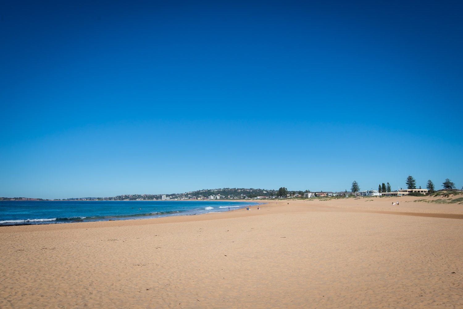 Looking down Narrabeen beach. To the right is the end of the lagoon and behind to the left are the tidal pools