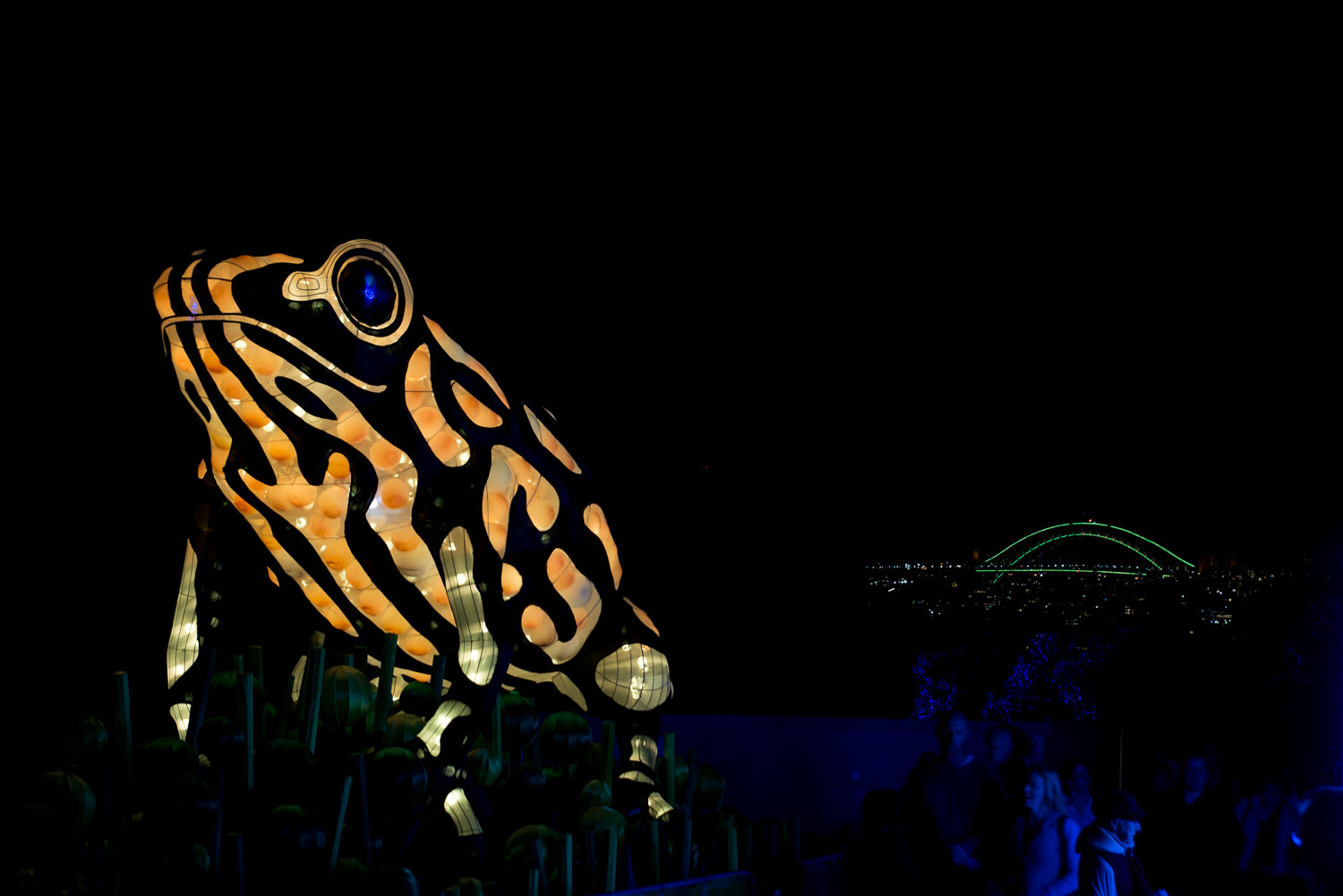 Vivid at the zoo with the Harbour Bridge in the backgroun