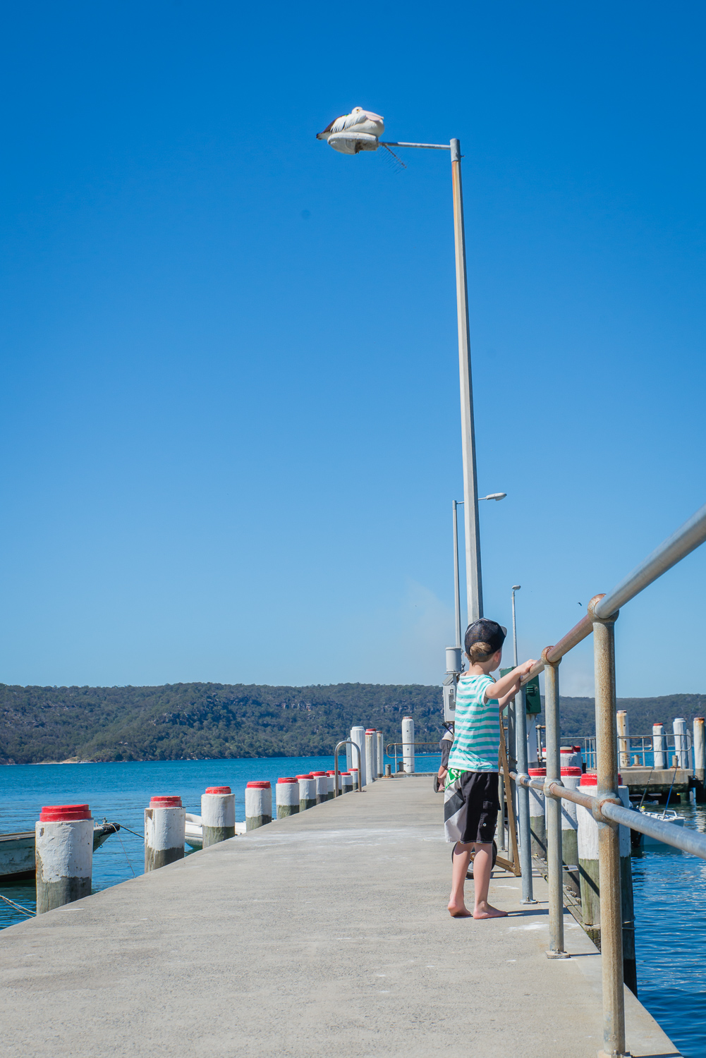 Mr 6 exploring the jetty