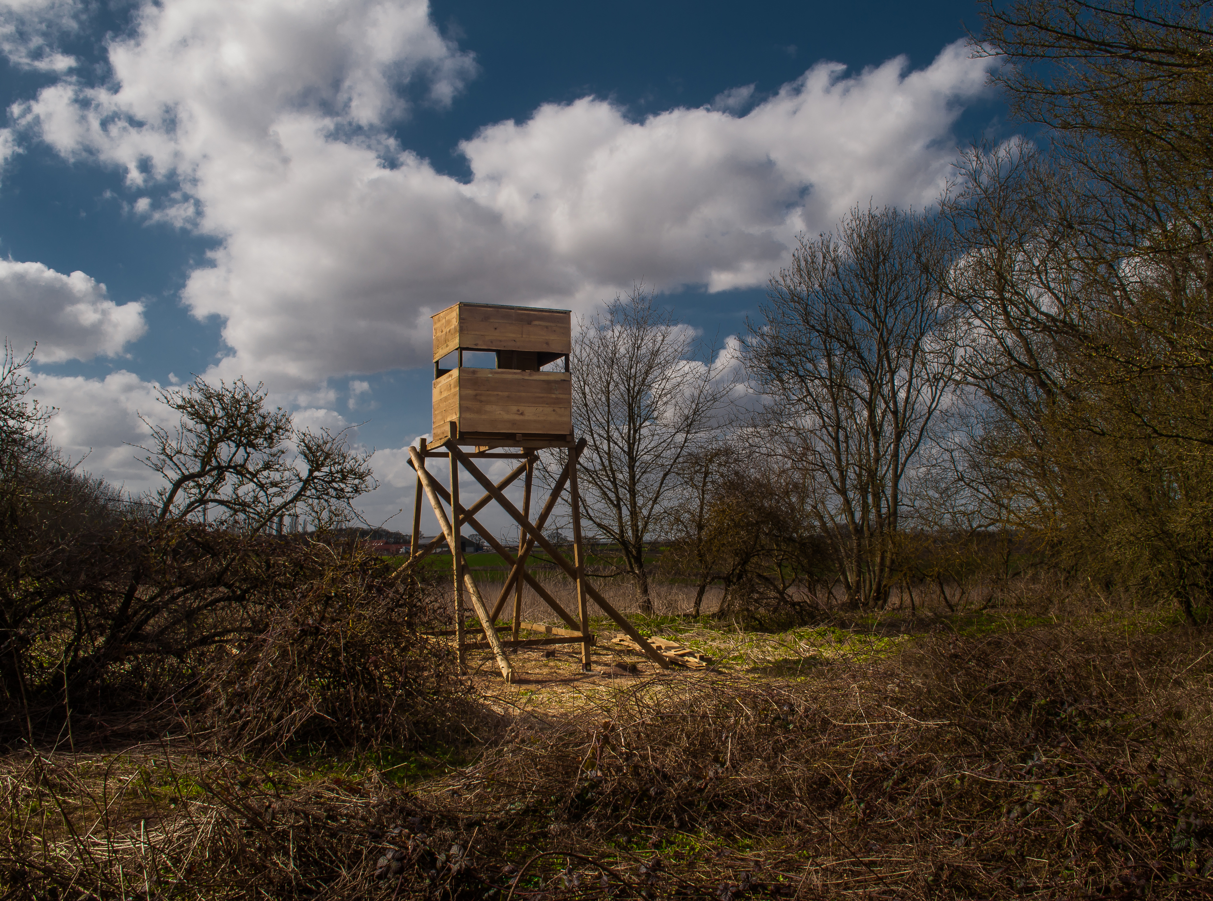Dan Robinson - Cabin for Duke's Wood - 2 - 2013.JPG