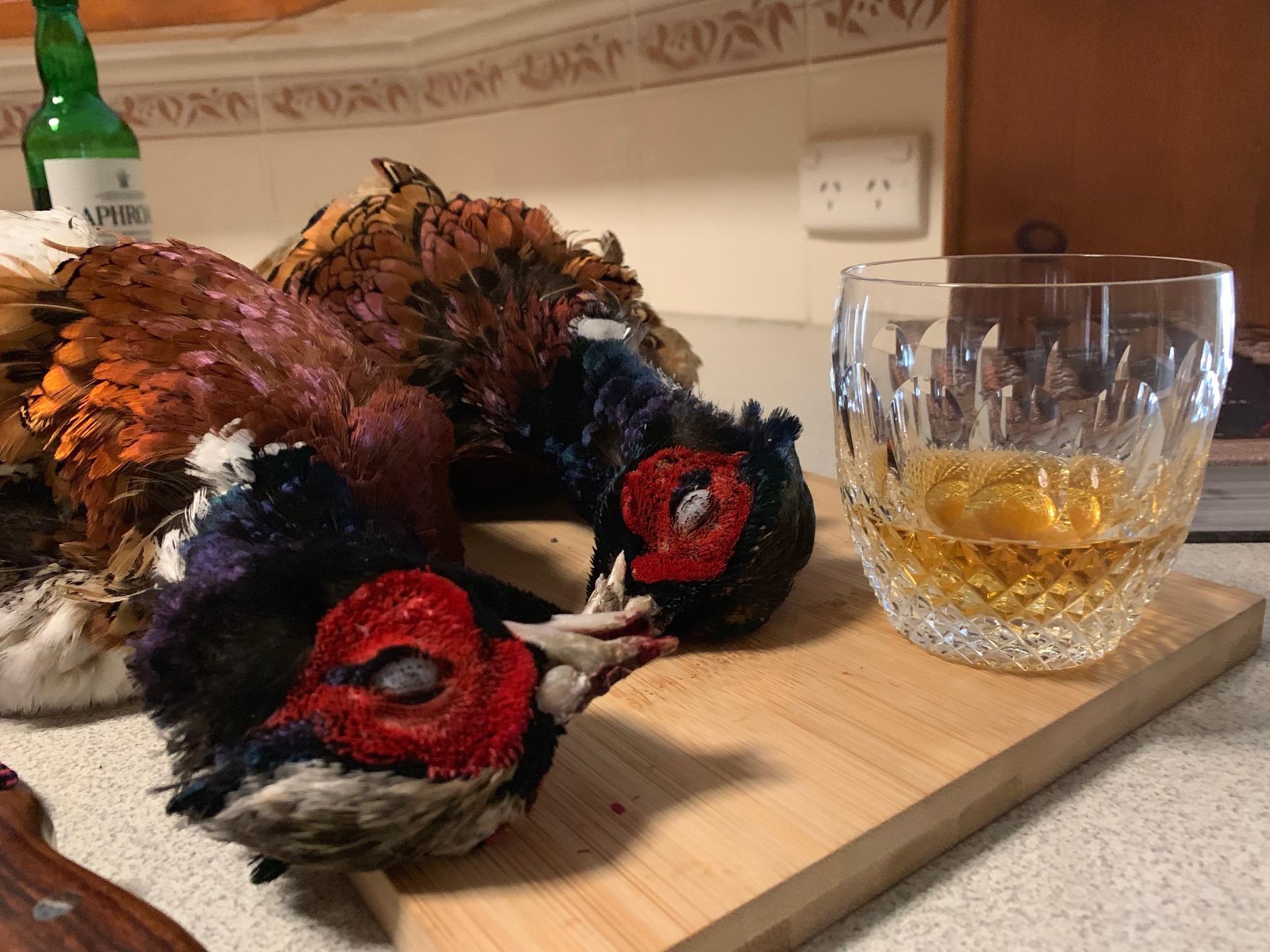 pheasants scotch.jpg