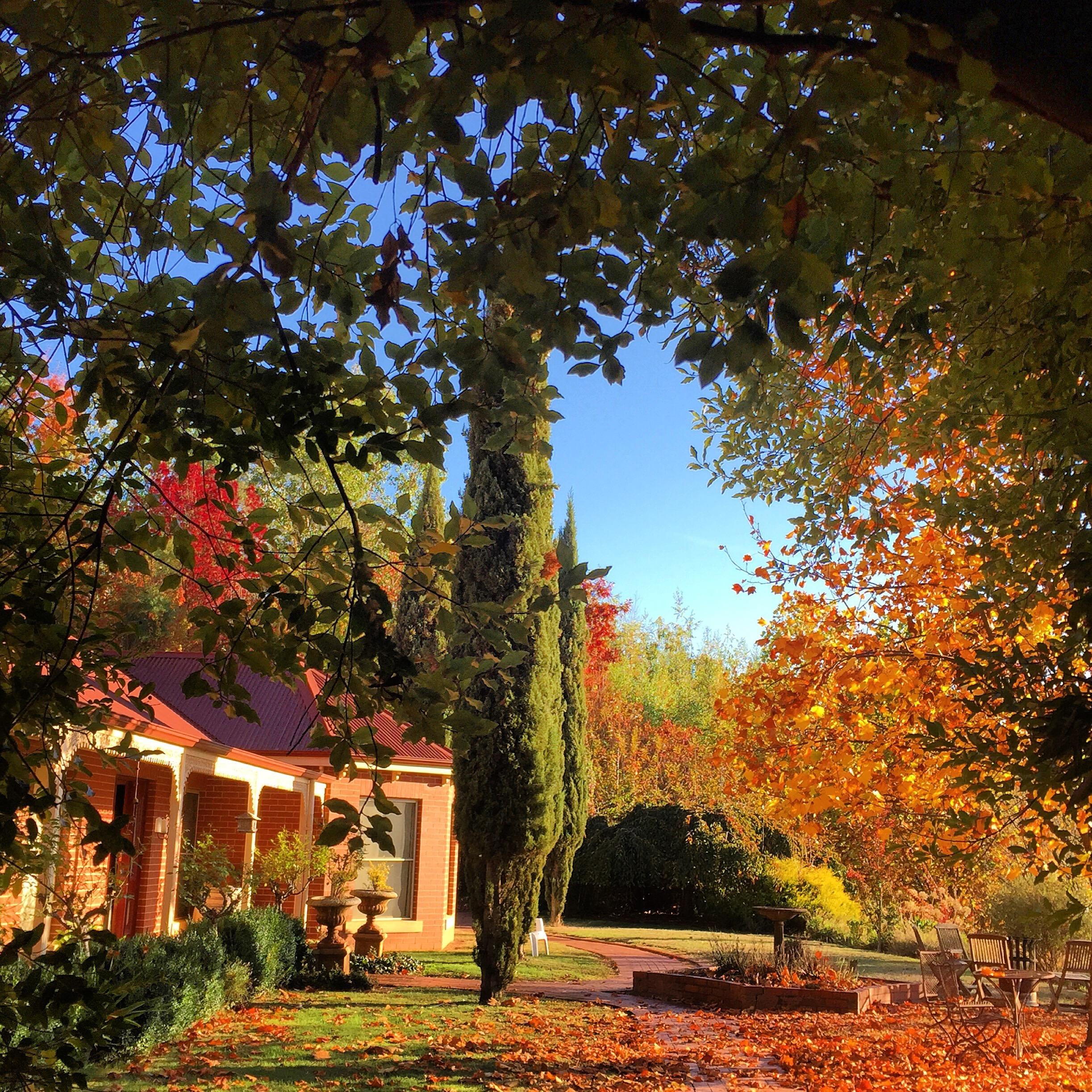 In early Autumn… Luxury mountain retreat. (+61) 0402266358