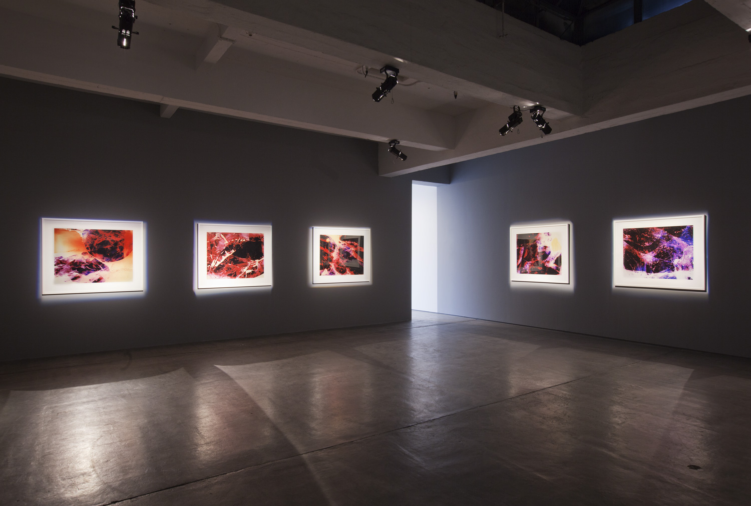 Redshift series,Carey Young,2010,Installation view at Paula Cooper Gallery, New York