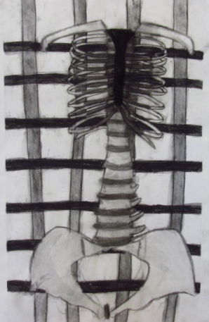 Abdomin  2013. Charcoal, conte crayon, and newsprint paper.
