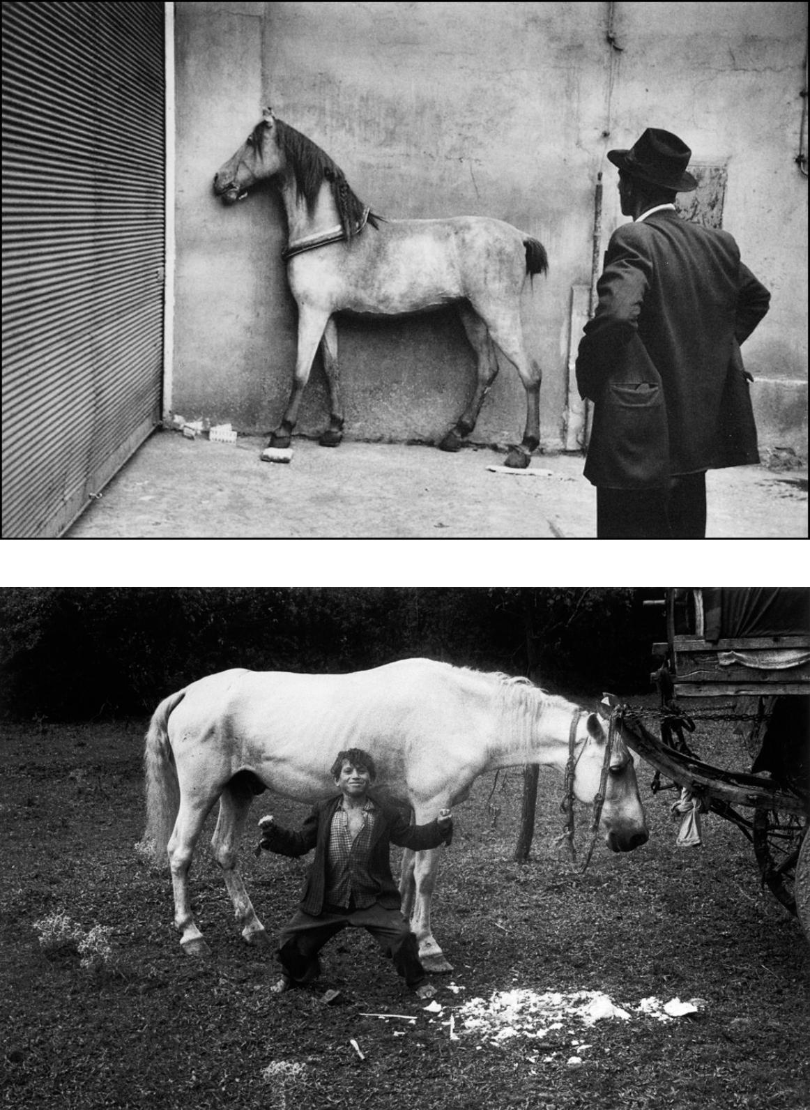 Koudelka y sus fotografias de caballos