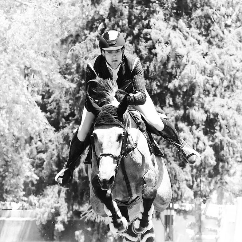 caballos-fotografo.jpg