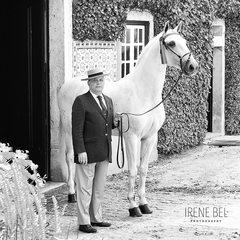 irene bel caballo lusitano
