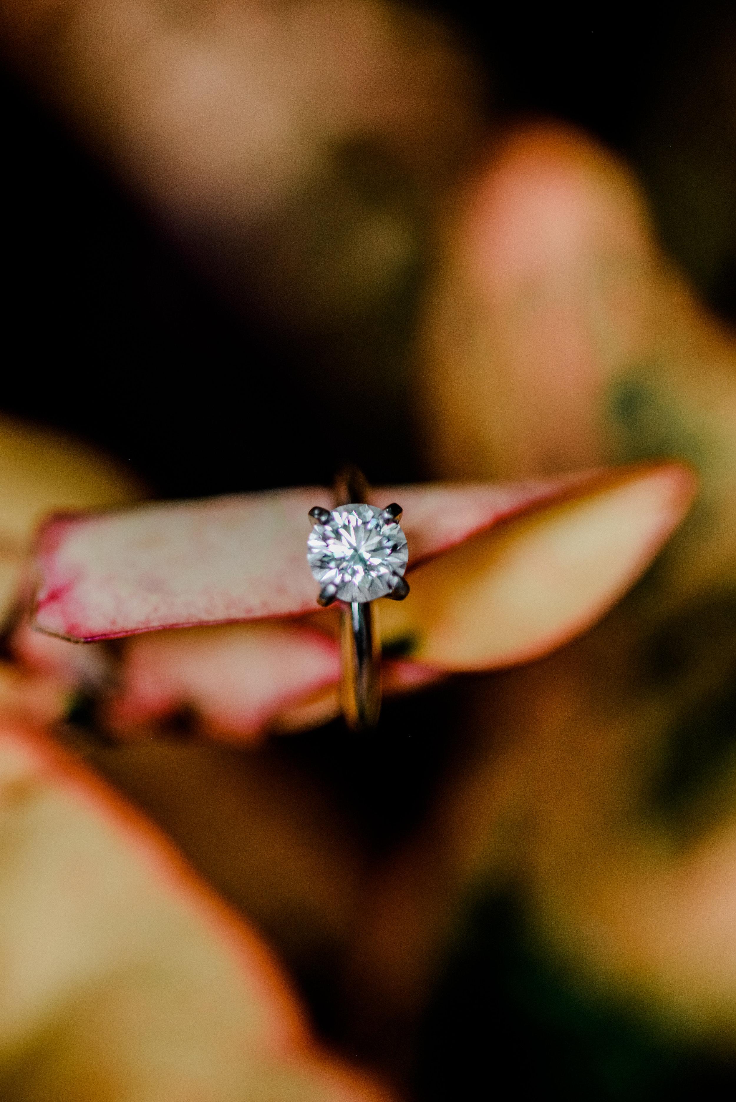 akron-ohio-engagement-photographer.jpg