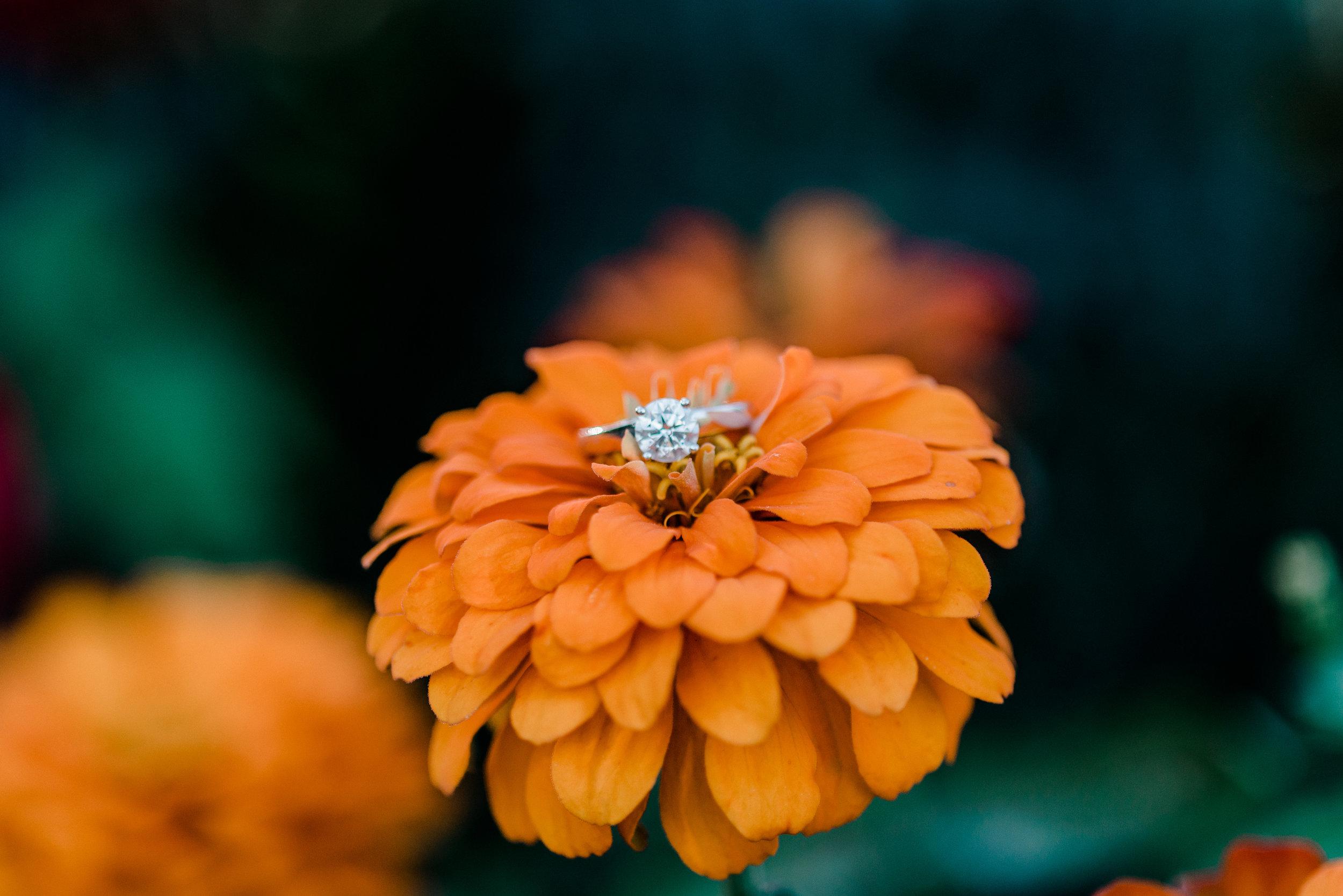 akron-ohio-wedding-photographer.jpg