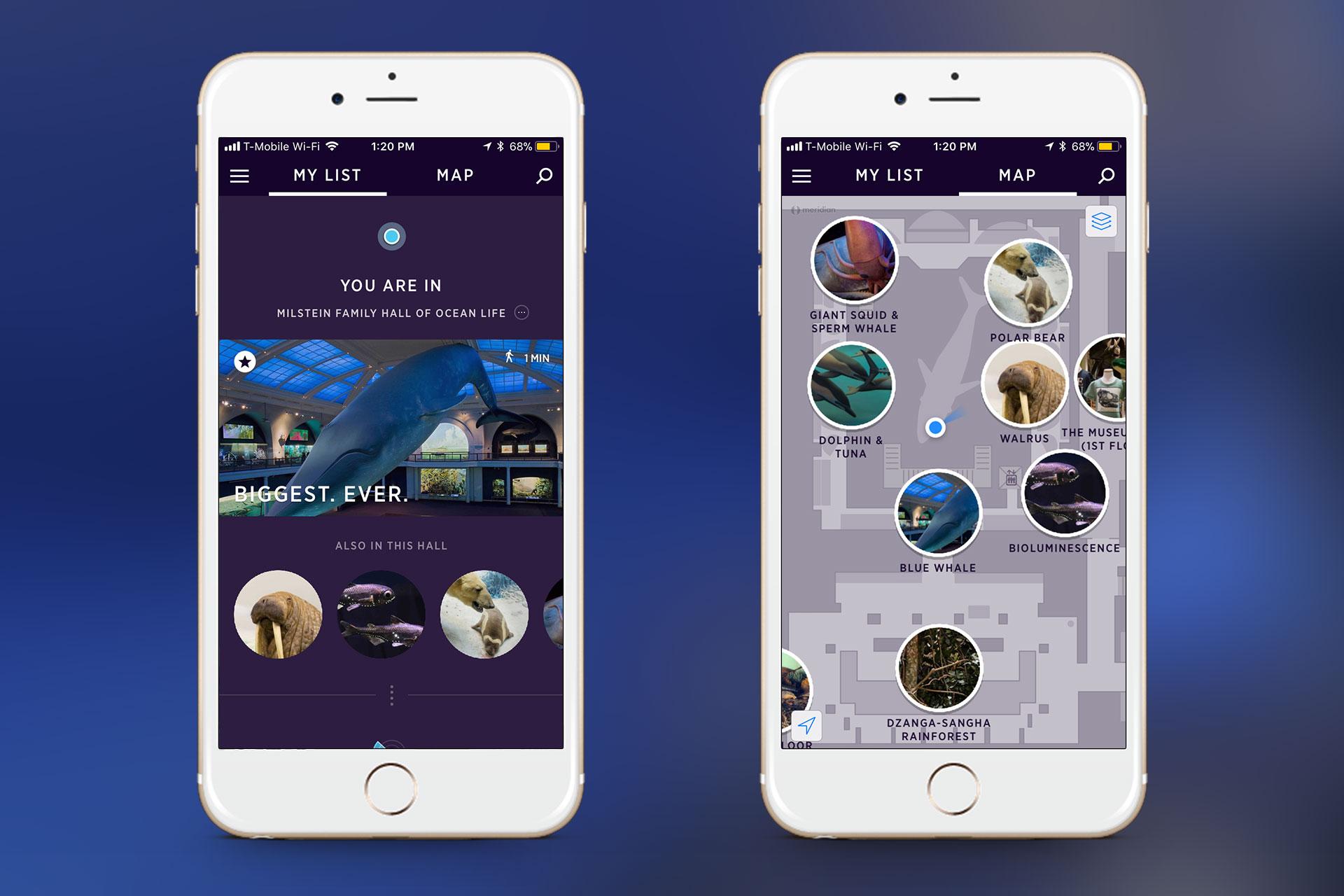 amnh-explorer-app-2.jpg