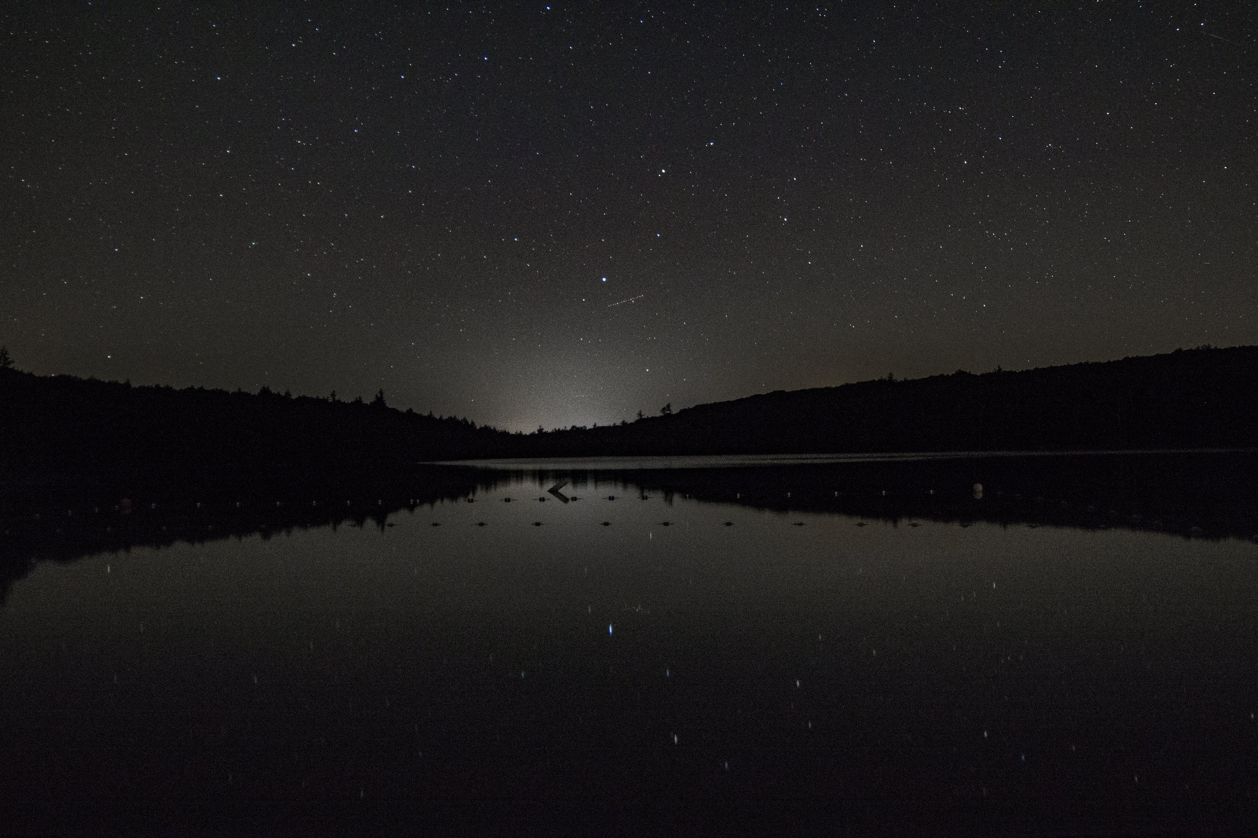 The Pleiades. Photo credit: Laura Mitchell