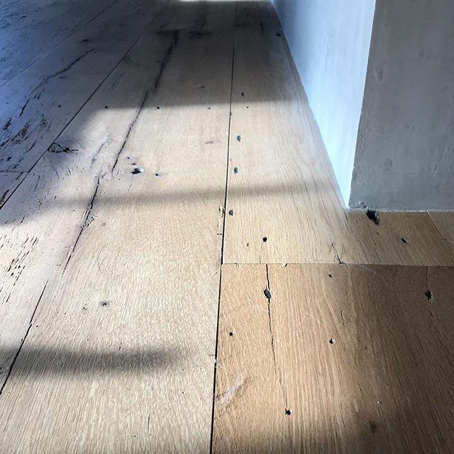 Reclaimed oak flooring and plaster wall @377builders