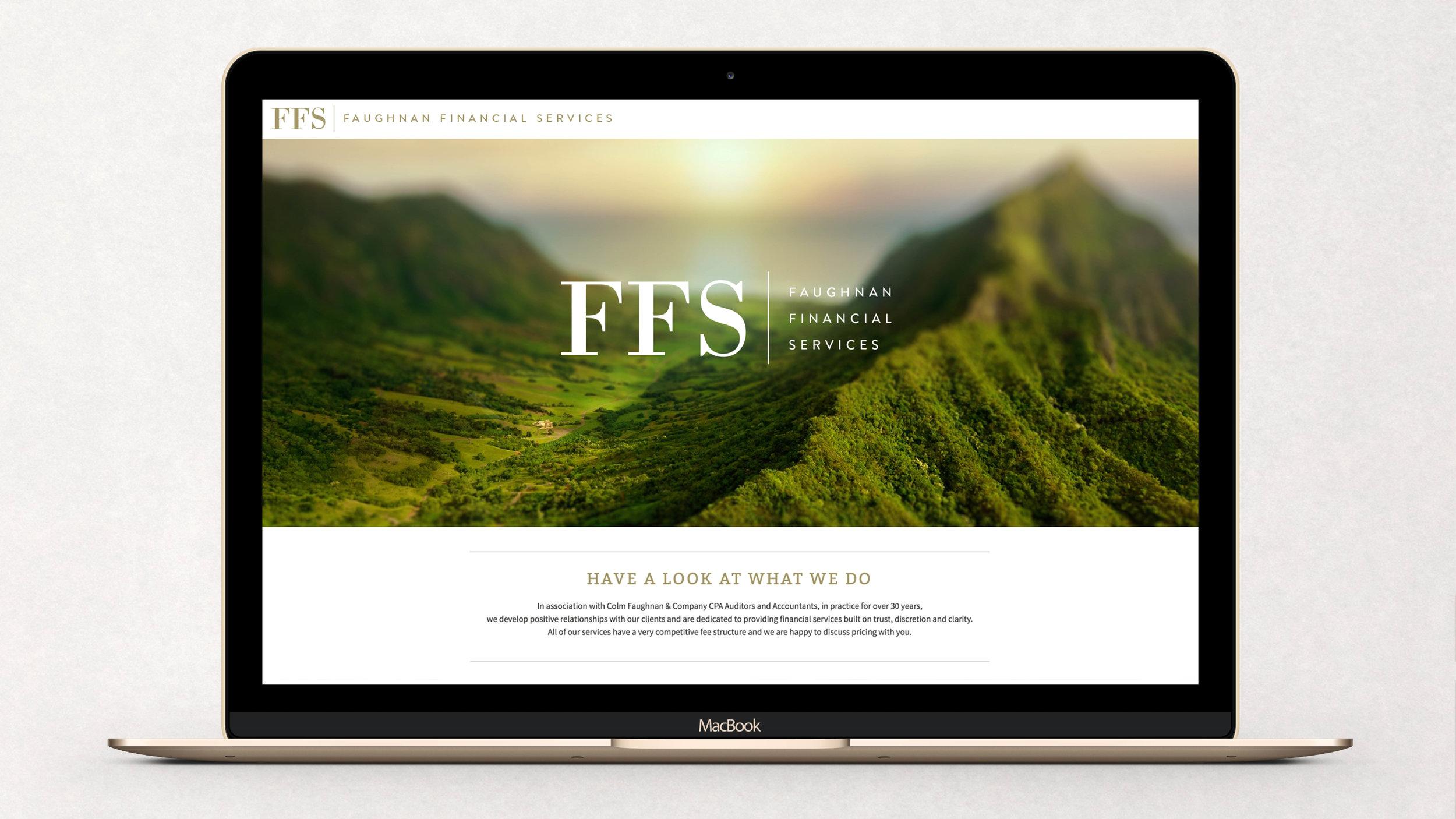 FFS2.jpg
