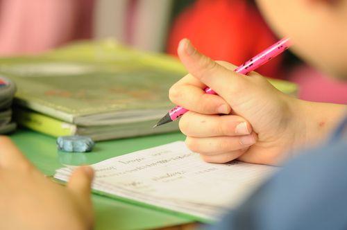the cogat test captures a child's potential for school success