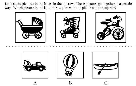 Level 5/6 Picture Classification Example question