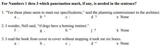 Language Punctuation - Sample