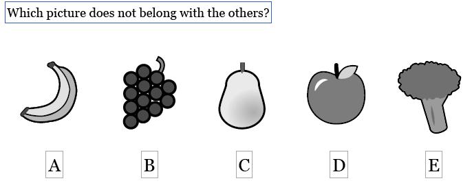 WISC Practice Test Online - Sample Question