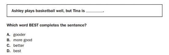 Georgia Milestones Practice Test -3rd Grade Language sample