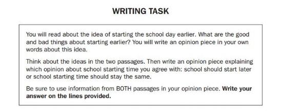 Georgia Milestones Practice Test 3rd Grade - Essay sample