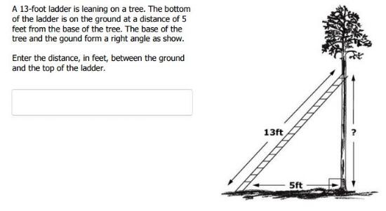 SBAC TEST - 8th grade Pythagorean Theorem sample