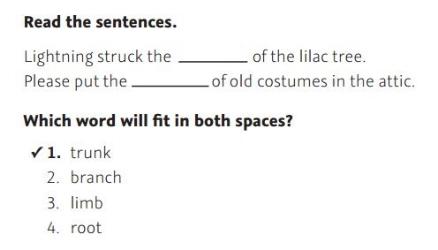 NWEA Practice Test 3rd Grade Test  -Complete Sentence sample