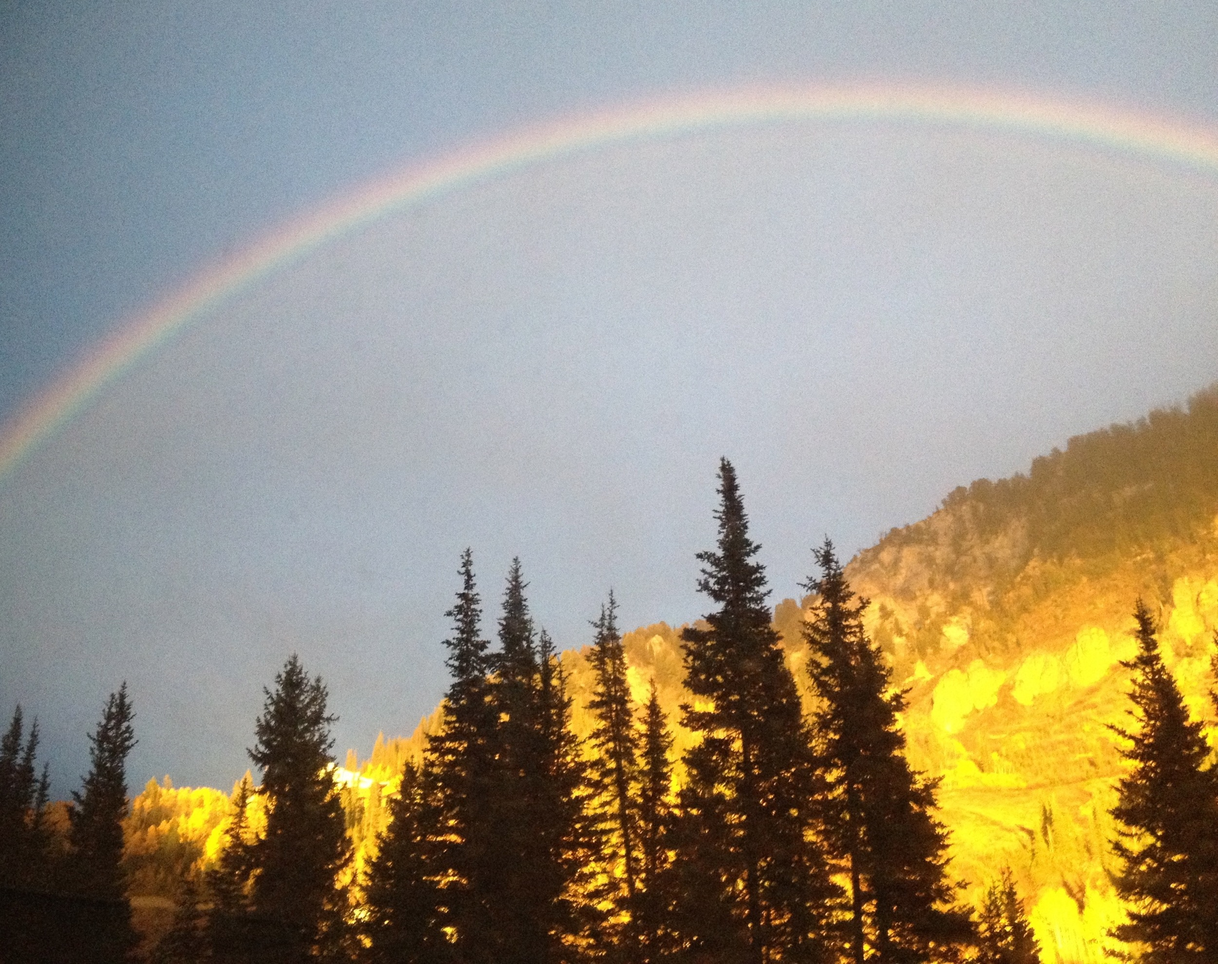 Jani McCarty Rainbow Provo UT