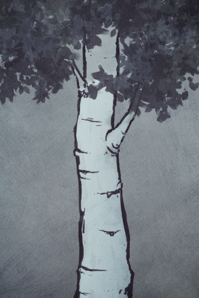 Just an experiment. It's an aspen tree or something.