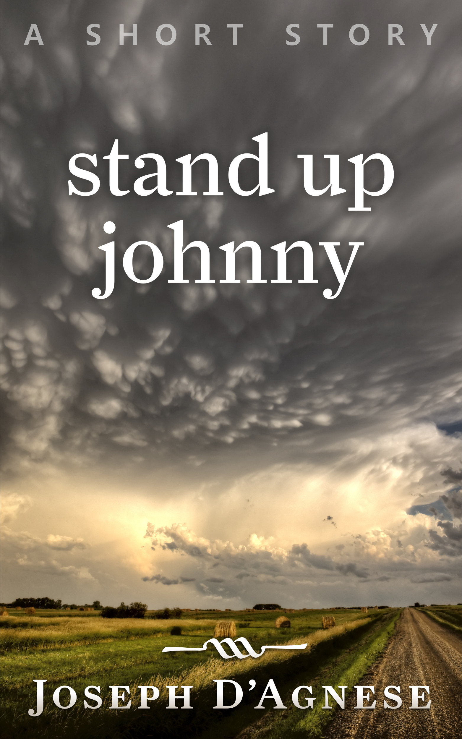 Stand Up Johnny, a short story by Joseph D'Agnese