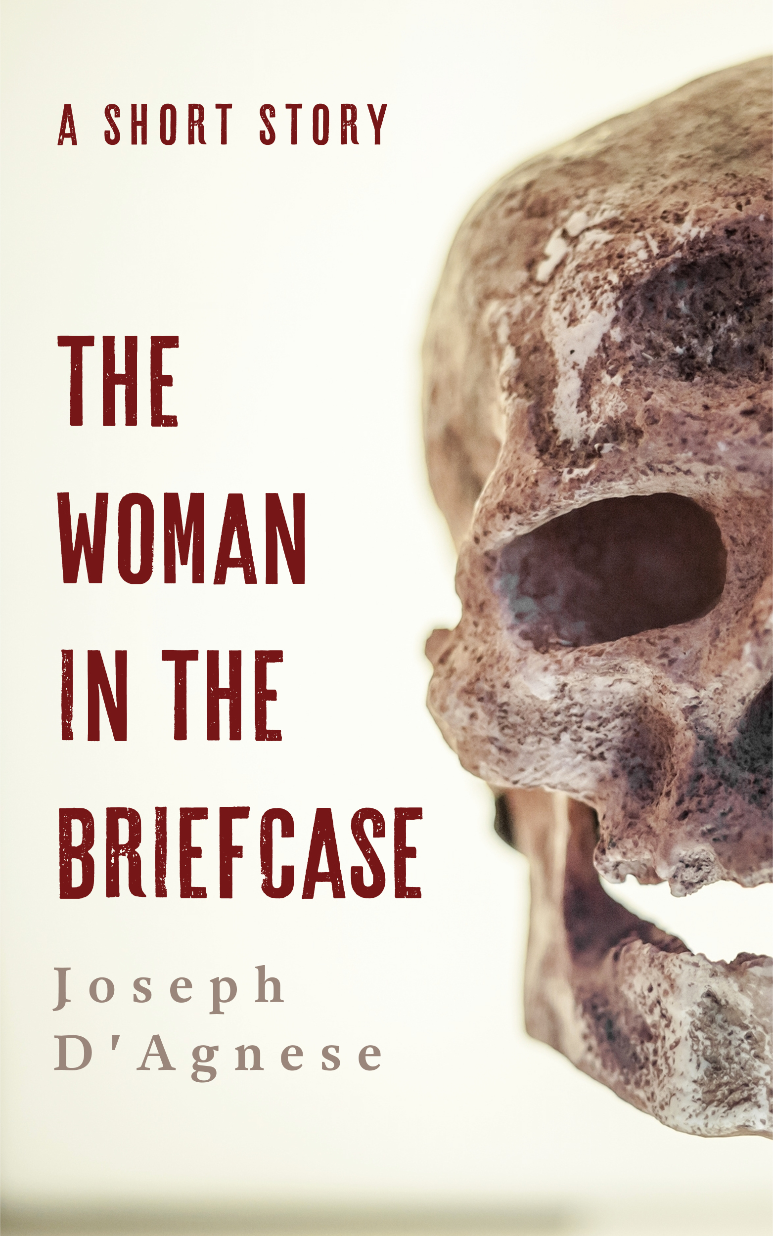 The Woman in the Briefcase by Joseph D'Agnese