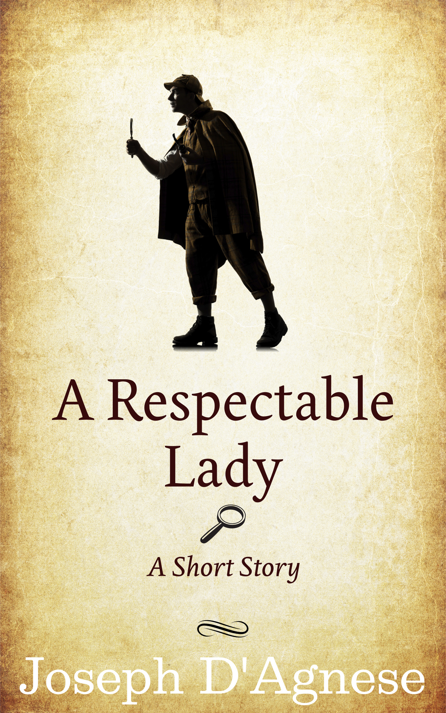 A Respectable Lady by Joseph D'Agnese