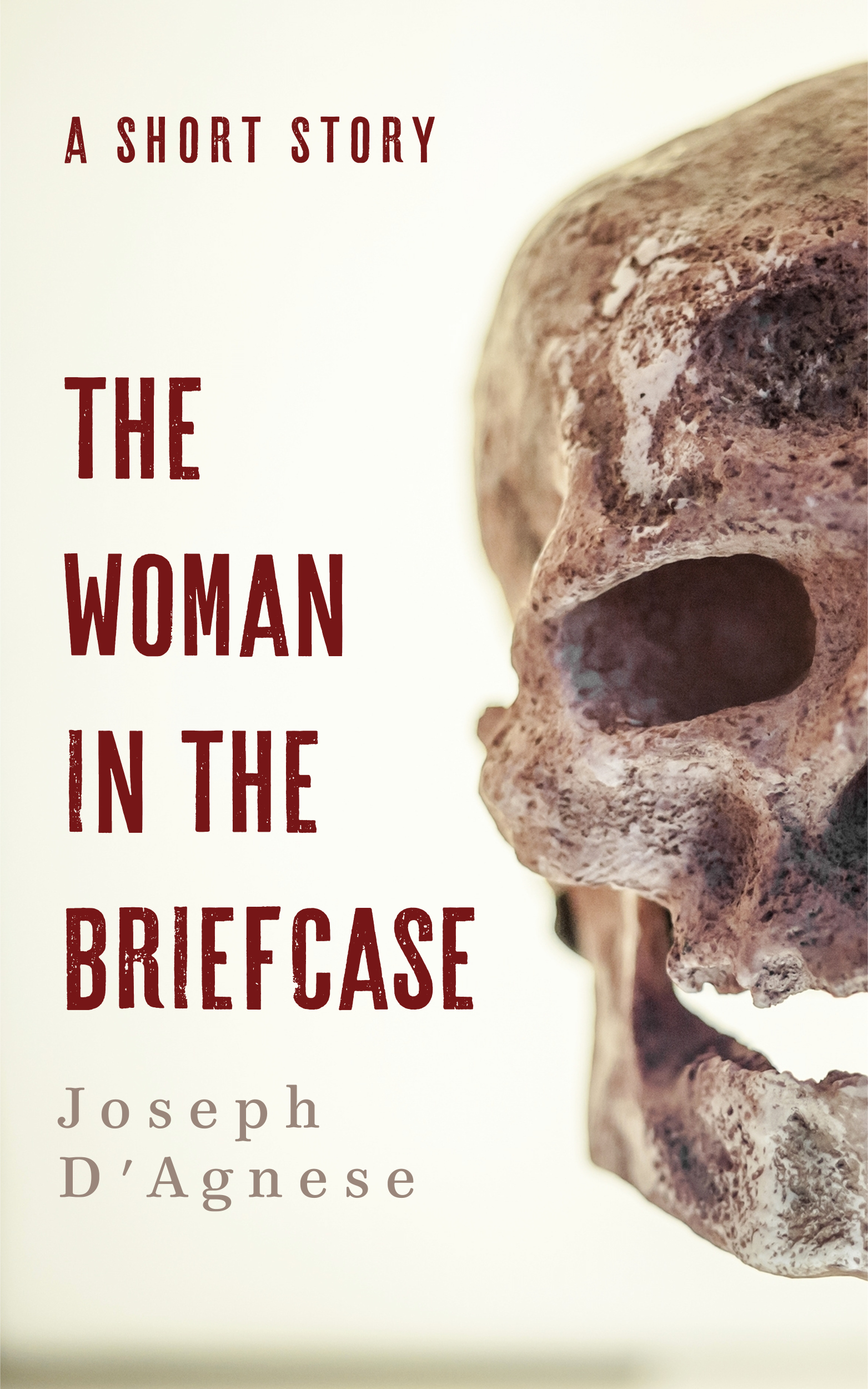 The Woman in the Briefcase, a crime story based simultaneously in the world of forensic anthropology and the long past, by Joseph D'Agnese