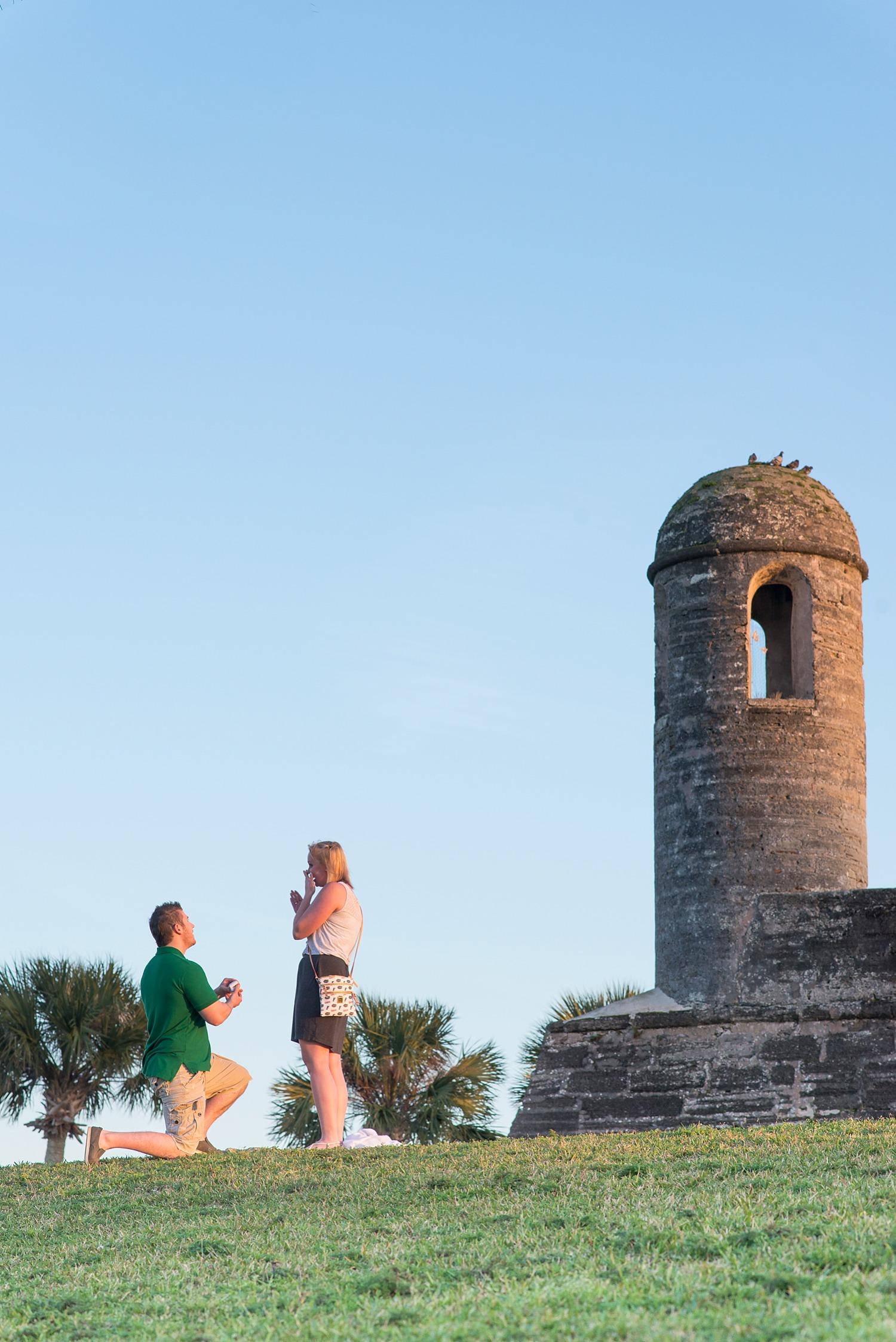 Surprise Proposal St. Augustine