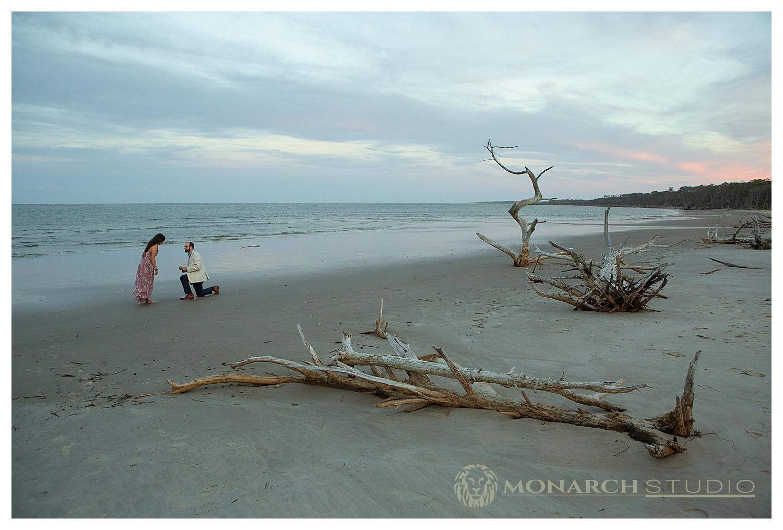 Amelia Island Surprise Proposal Photographer - 004.JPG