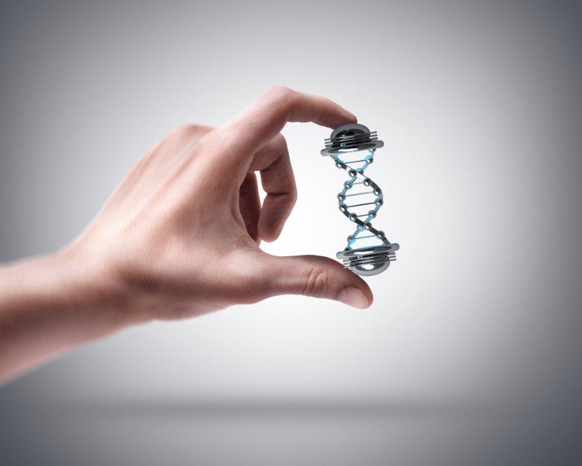 Company DNA.jpg