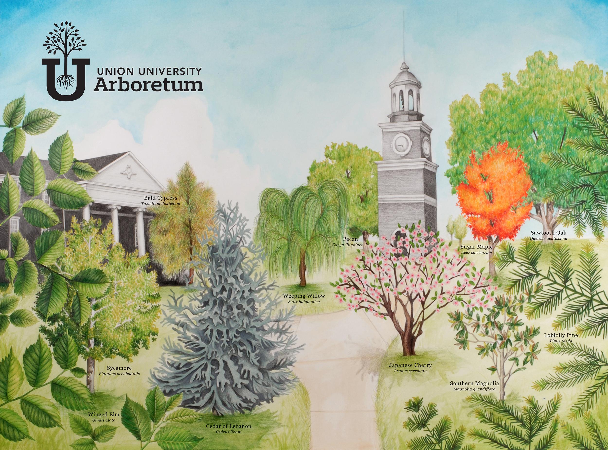 Arboretum-Art.png