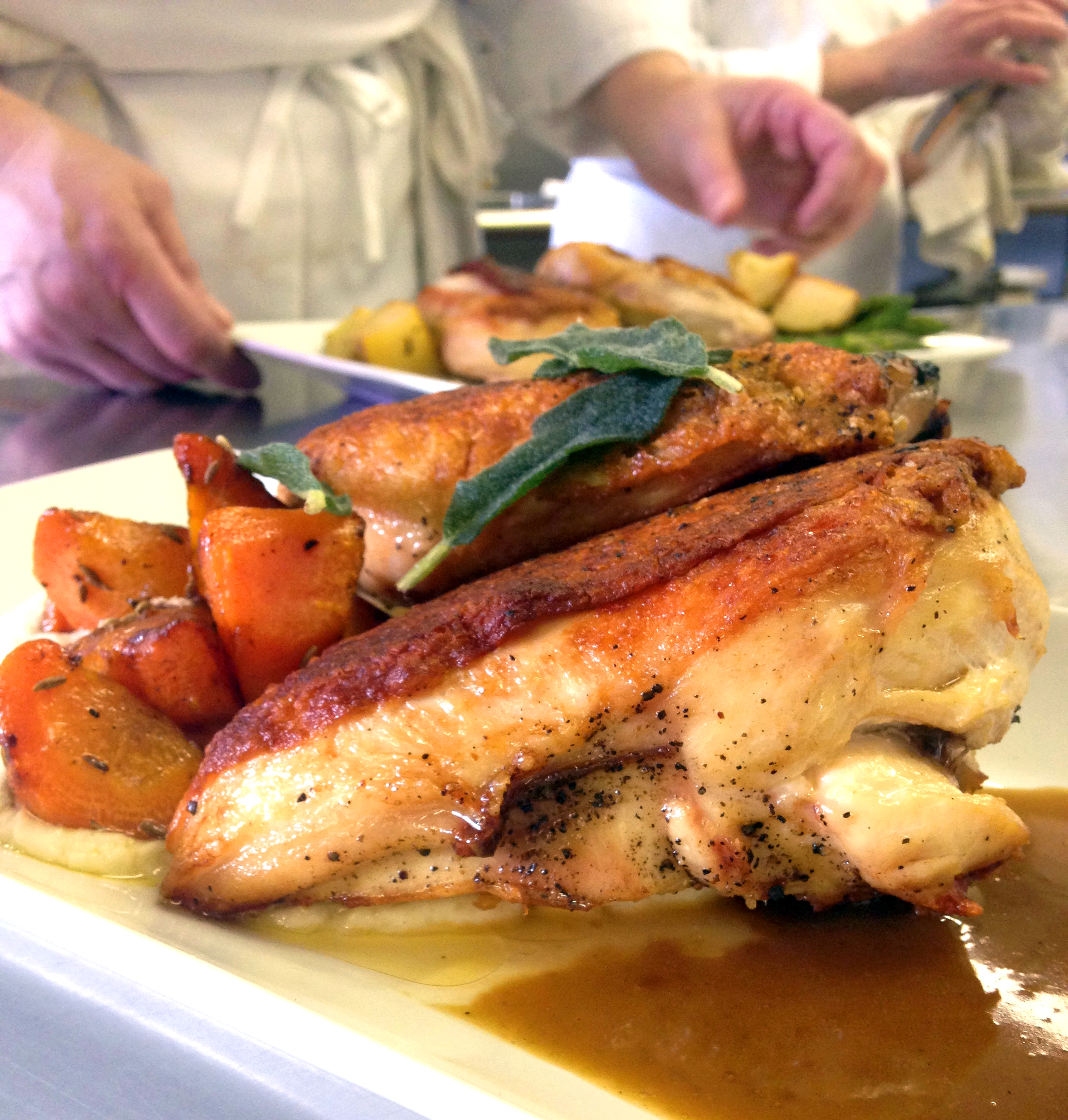 Not the best angle, but here's my pan-roasted chicken with jus, parsnip puree, and roasted carrots