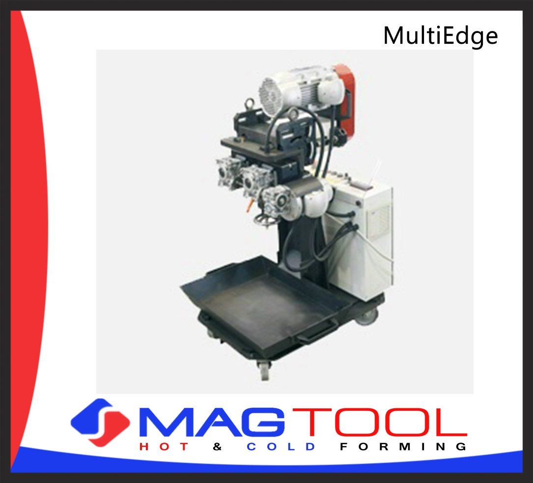 MultiEdge