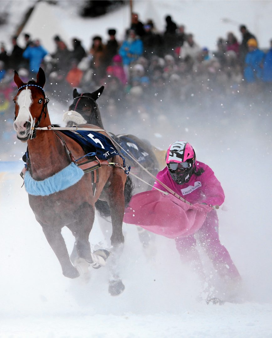 harness racing with skis (no wheels) / andy mettler