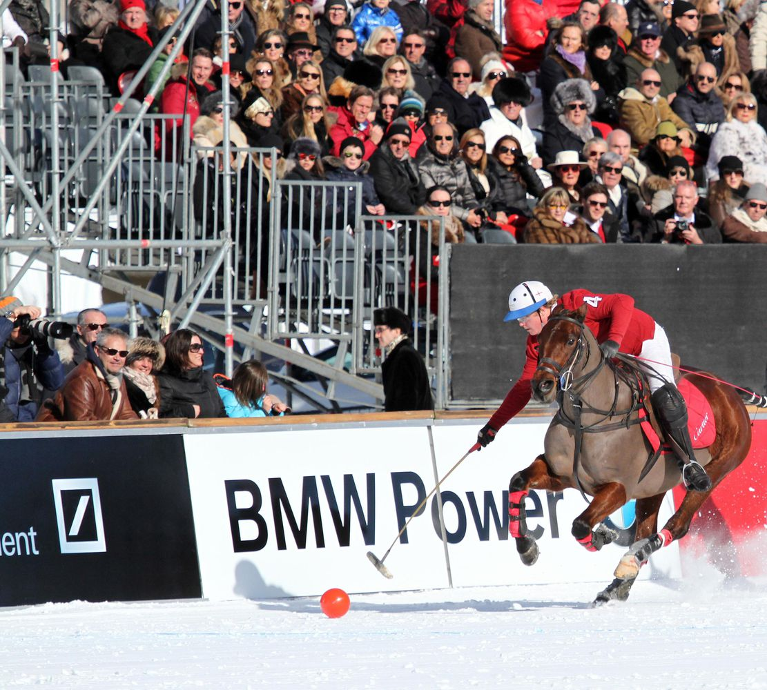 Snow Polo World Cup the only high goal polo tournament played on snow - looks like it could be a neck shot