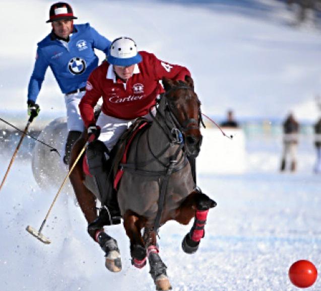 Snow Polo Action