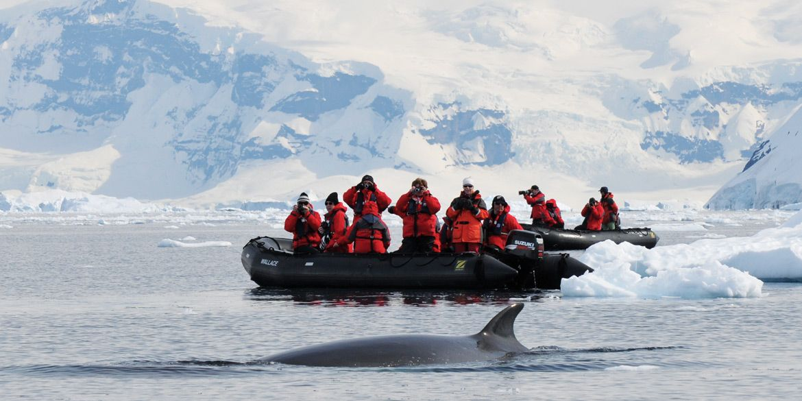 Antarctica up close and personal in a zodiac