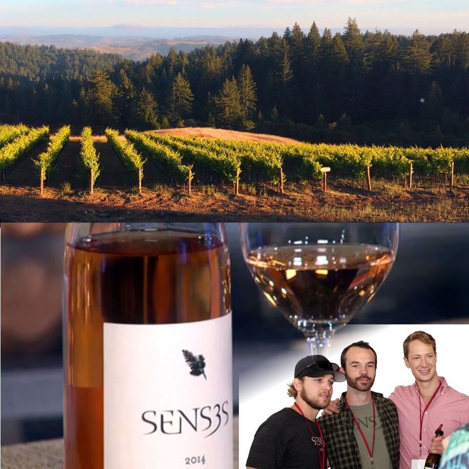 Senses wines is a wine created from friendship. three guys from Cali -CHRIS, MAX AND MILES - who are the FOUNDERS OF SENSES' ESTATE VINEYARDS LOCATED ON NORTHERN CALIFORNIA'S SONOMA COAST