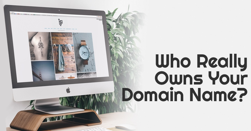 Who Really Owns Your Domain Name, Amazing Andrea